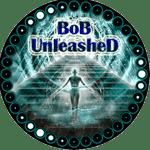 Watch WWE Royal Rumble 2018 on BoB Unleashed Kodi Addon